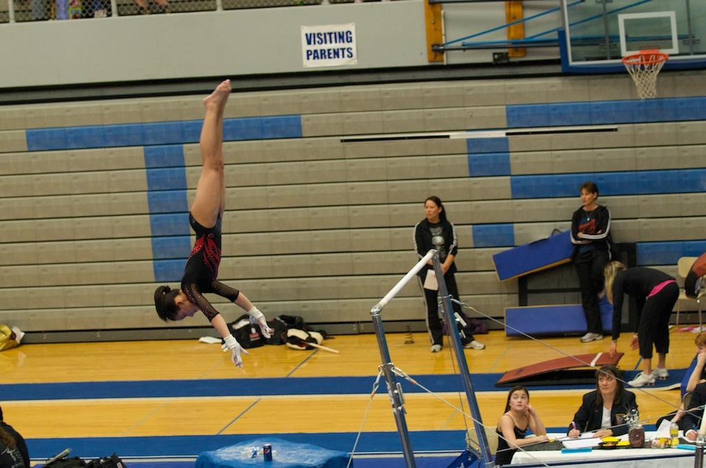 oregon gymnastics academy guidestar profile
