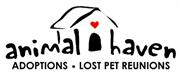 Animal Haven, Inc.