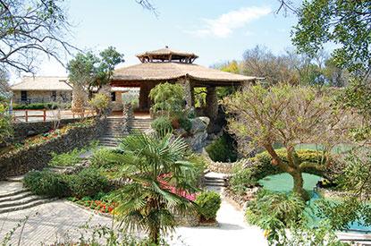 San Antonio Parks Foundation Guidestar Profile