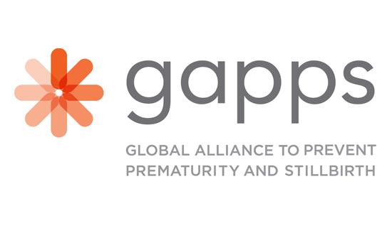 Gapps Guidestar Profile