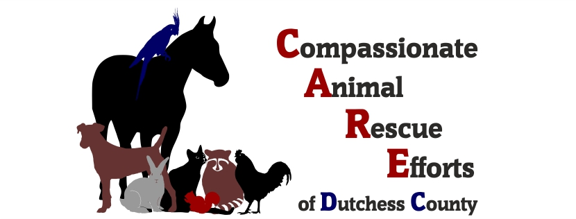 Compassionate Animal Rescue Efforts of Dutchess County Inc